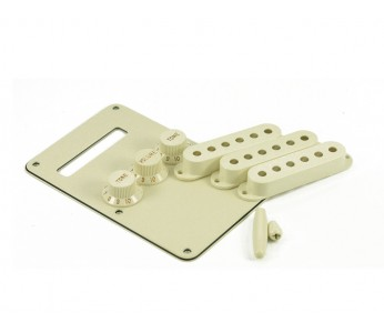 Guitar Patrol - Fender parchment accessory kit for Strat