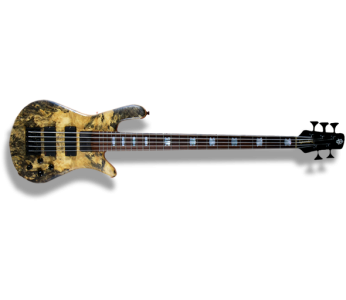 Spector USA NS-5H2-EX 5 String Bass