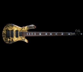 Spector USA NS-5H2-EX 5 String Bass
